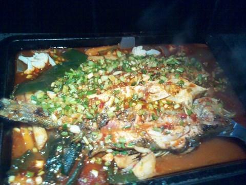在炉鱼吃海鲈鱼