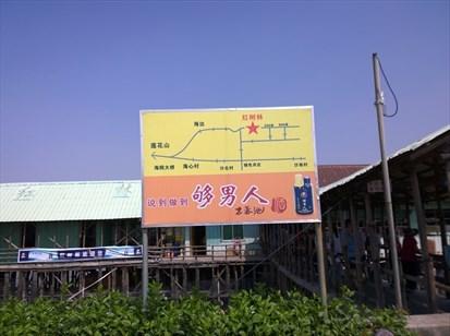 国庆长假,前往番禺石楼镇的海鸥岛游玩,在红树林吃了个午饭.