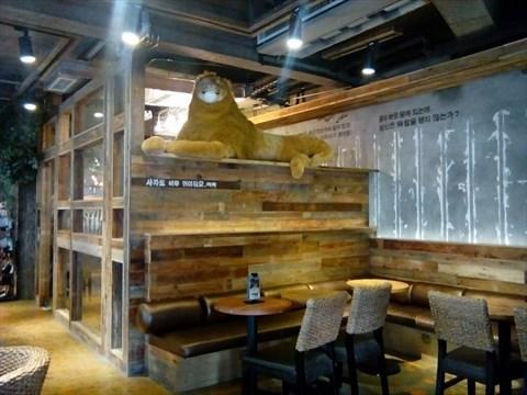 来自韩国的咖啡店,用动物园文化与咖啡